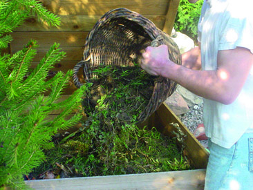 Le compostage - Le mag ISEKI