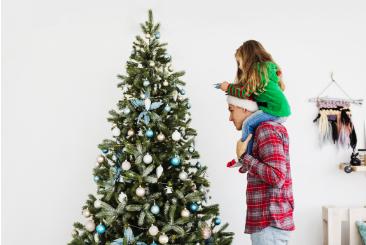Que faire de son sapin de Noël ? - le mag iseki