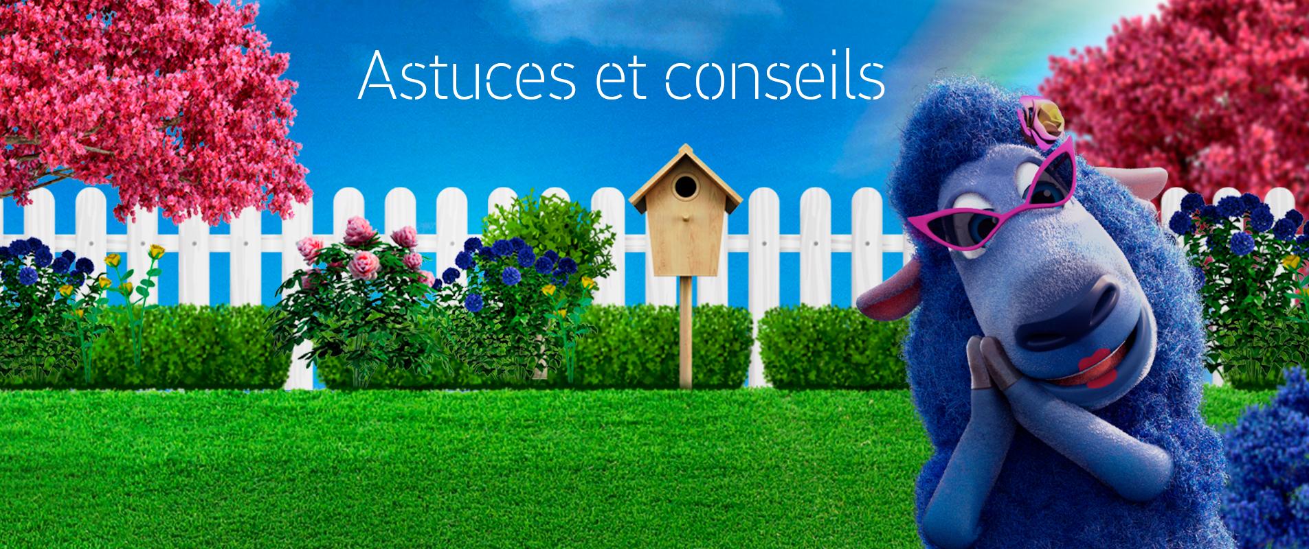 Jardin Classique À La Française les styles de jardin - le mag iseki